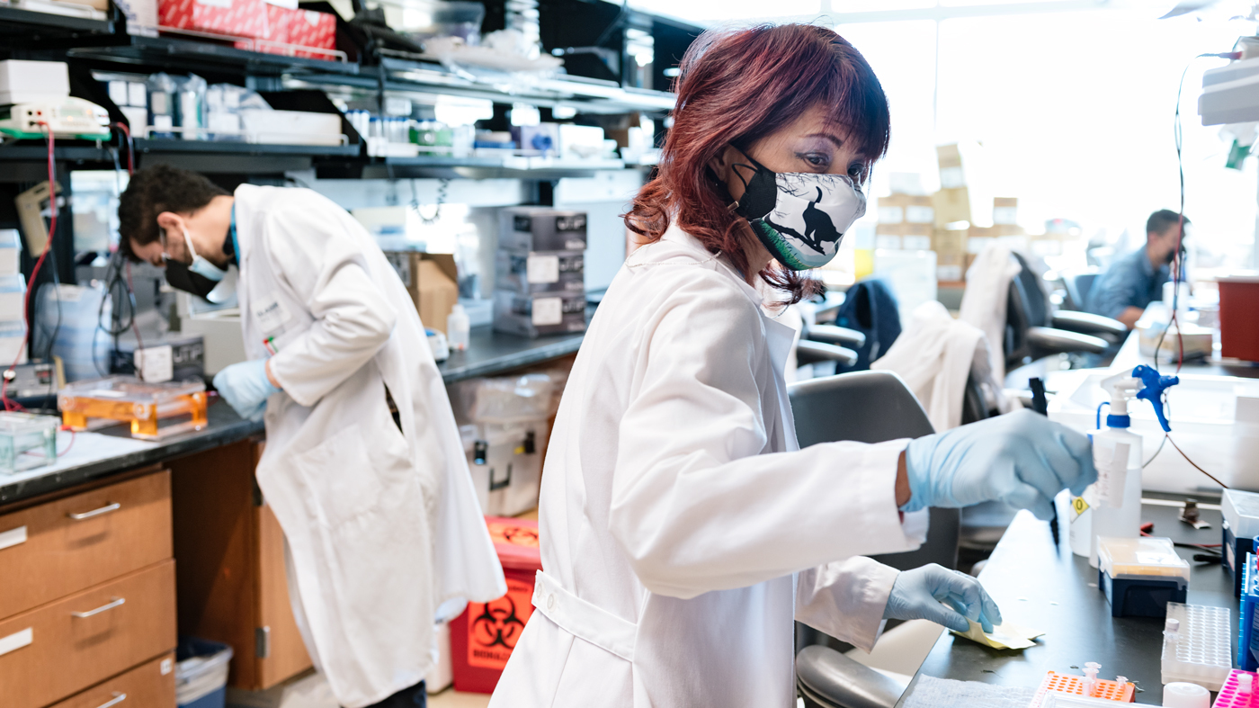 Scientists working in the Roan Lab at Gladstone Institutes