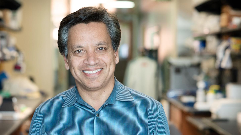 Deepak Srivastava, senior investigator at Gladstone Institutes
