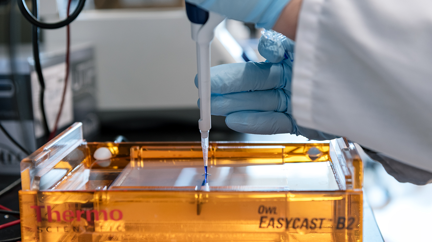 Scientist working in the Ott Lab at Gladstone